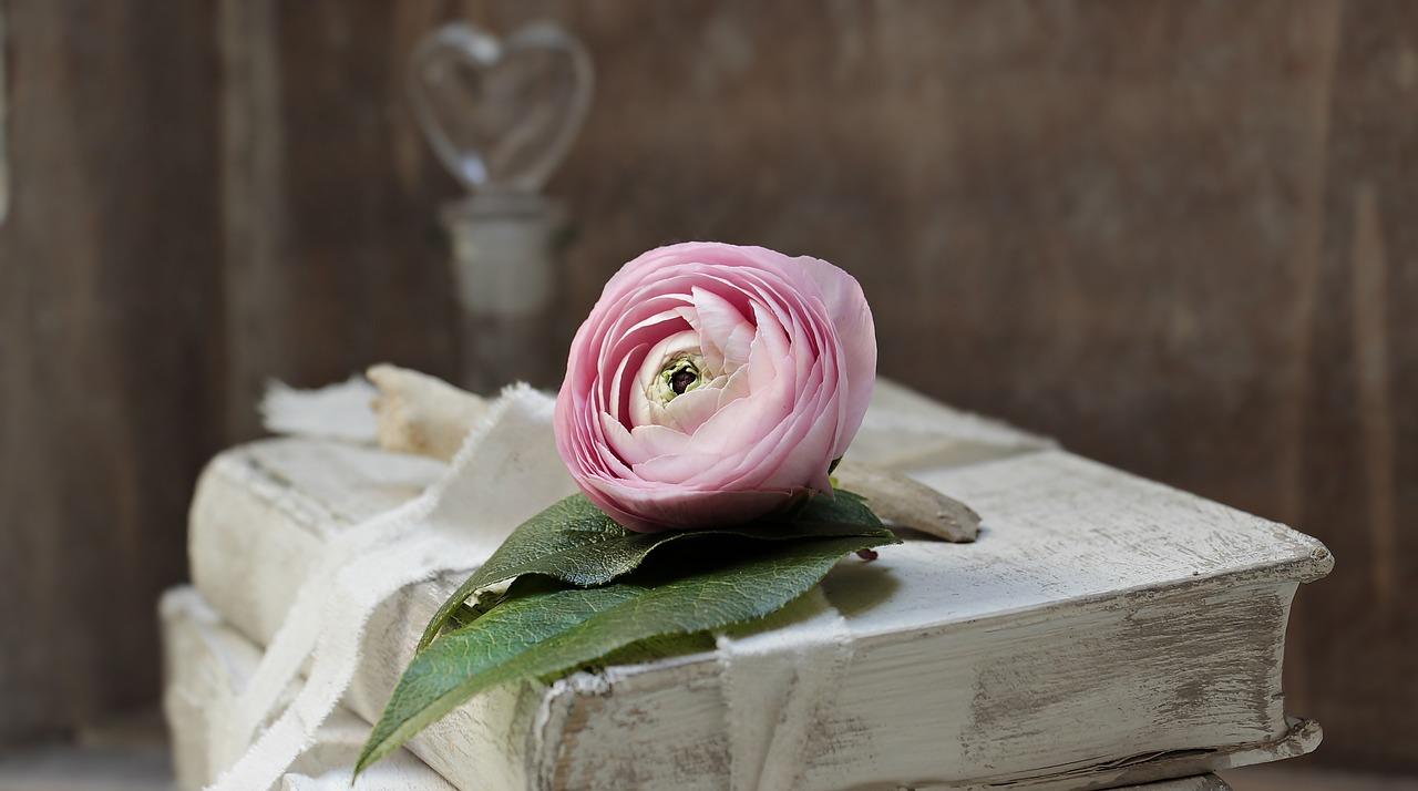 Irodalmi reménysugár az igaz szerelemhez