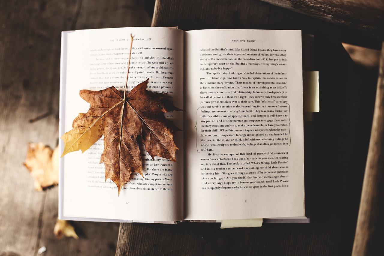 Erőleves a léleknek – melengető könyvek őszre