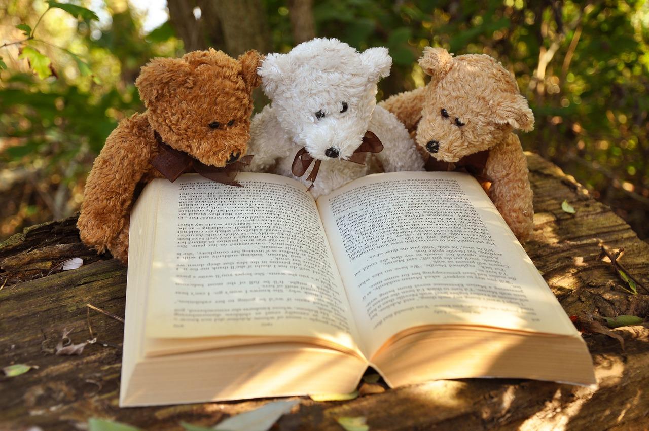 A 7 legjobb könyves család